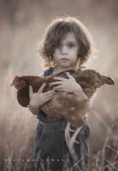 holding a hen