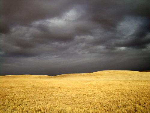 dark sky on prairie