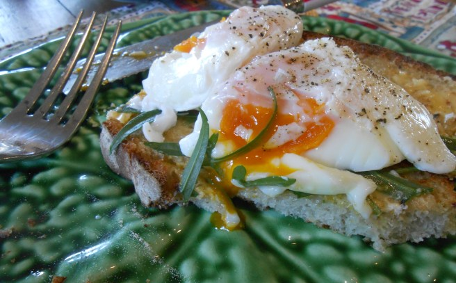 Poached Egg 019